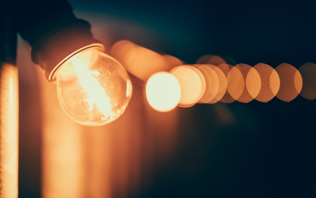 The Edison Doctrine – Why Experimentation is Key to Survival